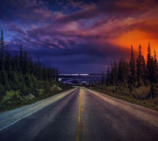 Обои на телефон дороги, закат, деревья