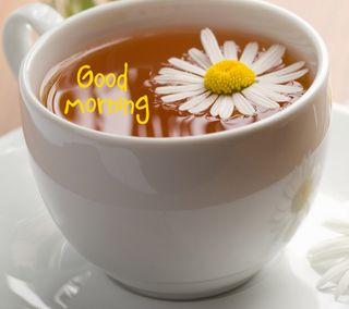 Обои на телефон чашка, утро, поговорка, кофе, знаки, good, cup