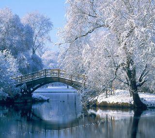 Обои на телефон снежные, мост, снег, новый, зима, вид, bridge snow