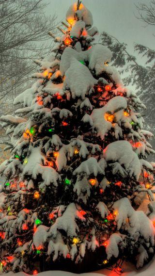 Обои на телефон праздник, рождество, огни, дерево