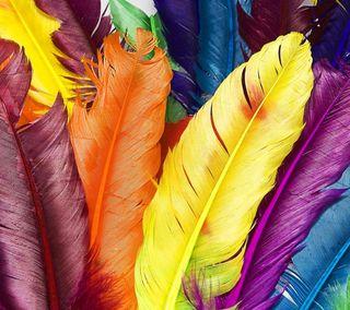 Обои на телефон перья, цветные, красочные, color feathers