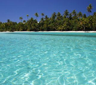 Обои на телефон природа, пляж, песок, пейзаж, вода, perfect