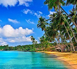 Обои на телефон песок, тропические, пляж, океан, облака, небо, море, palmas