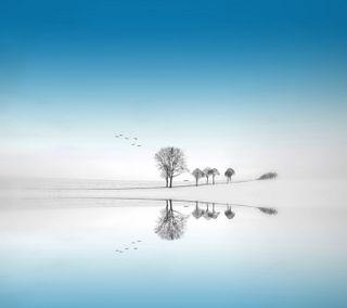 Обои на телефон небеса, синие, простые, одиночество, небо, маленький, крошечный, зима, живописные, деревья, белые, a tiny heaven