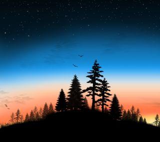 Обои на телефон холм, птицы, лес, закат, деревья, вечер, evening on a hill