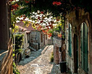Обои на телефон цветы, улица, солнце, прекрасные, деревня, windows, village street