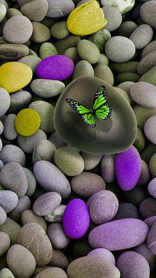 Обои на телефон желтые, фиолетовые, природа, камни, зеленые, дзен, бабочки