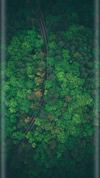 Обои на телефон стиль, природа, лес, красота, зеленые, грани, s7, edge style