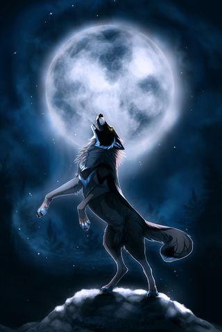 Обои на телефон луна, звезды, ночь, волк, вой
