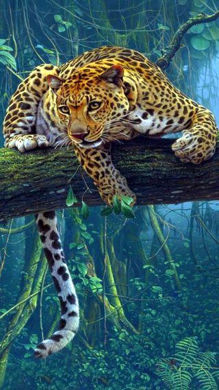 Обои на телефон ягуар, пантера, леопард, джунгли