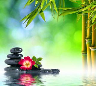 Обои на телефон релакс, цветы, спа, расслабляющие, отражение, камни, вода, relaxing spa