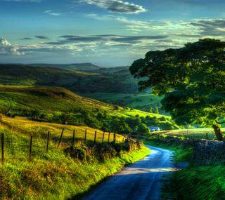 Обои на телефон солнце, природа, пейзаж, зеленые, over, nature landscape