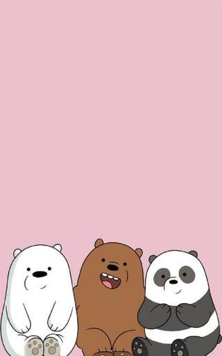 Обои на телефон полярный, медведь, панда, медведи, коричневые