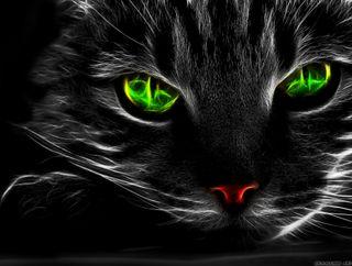 Обои на телефон fractal eye ca, крутые, милые, цветные, кошки, неоновые, животные, глаза, коты, фрактал