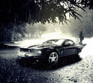 Обои на телефон шелби, форд, мустанг, дождь, mustang, ford