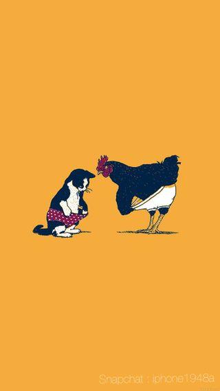 Обои на телефон фото, фан, курица, кошки, cat and chicken
