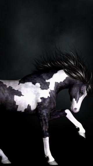 Обои на телефон пони, нарисованные, лошадь, животные, stallion, painted pony, cg