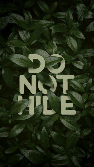 Обои на телефон чистые, цитата, текст, простые, прайд, мотивация, листья, крутые, зеленые, дизайн, hide, do