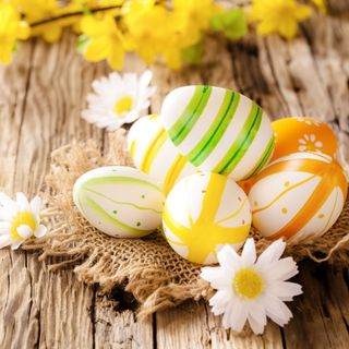 Обои на телефон яйца, празднование, цветы, цветные, украшение, праздник, пасхальные, дерево