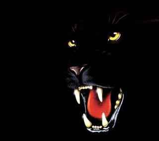 Обои на телефон пантера, черные, животные