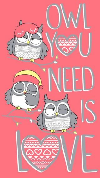 Обои на телефон сова, любовь, sowy, owl love, love