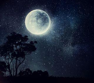 Обои на телефон планета, природа, ночь, лунный свет, луна, звезды, дерево, абстрактные, the moon