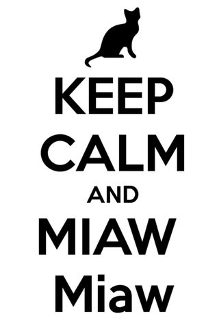 Обои на телефон спокойствие, мяу, лол, кошки, котята, miaw, lol, keep calm
