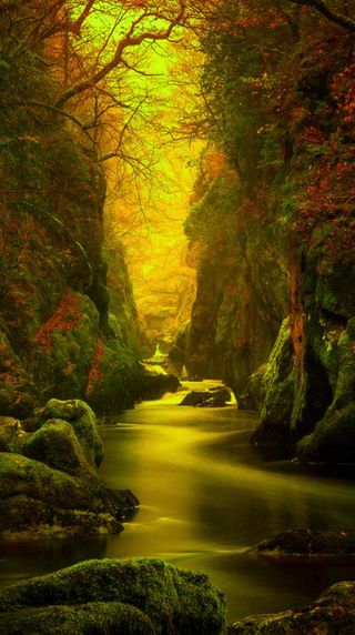 Обои на телефон природа, пейзаж, падает, камни, деревья, вода, nature landscape