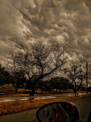 Обои на телефон штормовой, холод, оно, мокрые, зима, желтые, дерево, it was all yellow