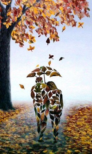 Обои на телефон любовники, осень, листья