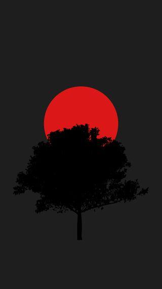 Обои на телефон вишня, японские, солнце, сад, плоские, минимализм, материал, дизайн, дерево, japanese garden, japa, 929