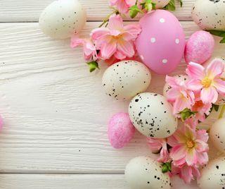 Обои на телефон яйца, пасхальные, розовые, белые, colous