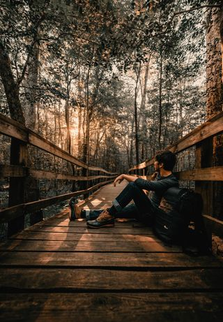 Обои на телефон autumn pictures, природа, осень, мост, фотографии, пейзаж