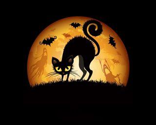 Обои на телефон хэллоуин, призрак, ночь, луна, летучая мышь, кошки, halloween night, ghost