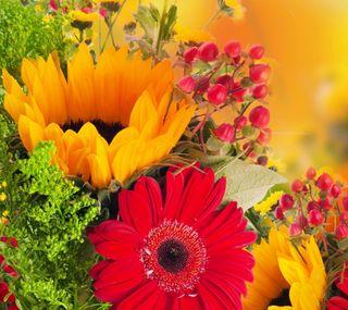 Обои на телефон цветы, природа, день рождения, boquet flowers