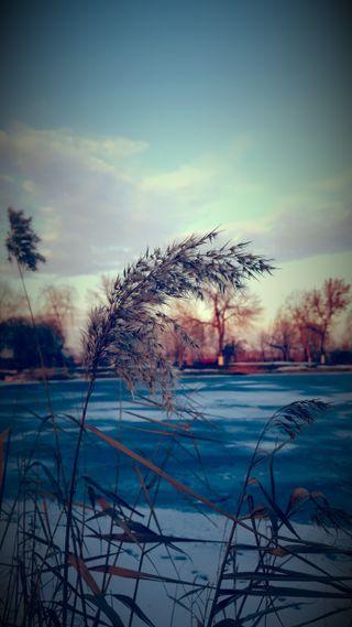 Обои на телефон холодное, снег, природа, озеро, зима
