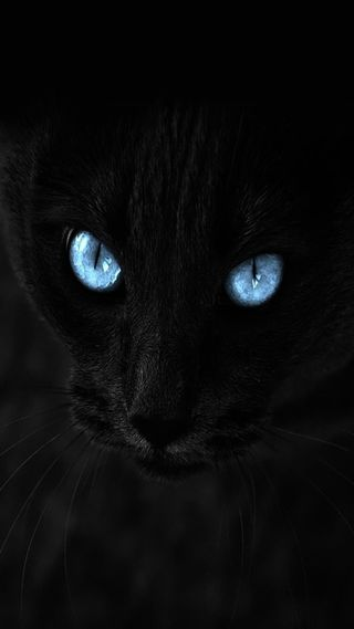 Обои на телефон глаза, синие