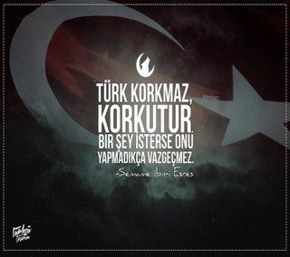Обои на телефон турецкие, люди, turkish people, commando, bordobereli, asker