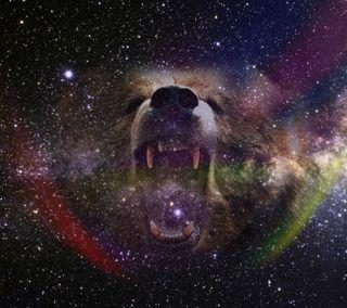Обои на телефон зверь, медведь, космос, звезда, животные, галактика, space beast, galaxy