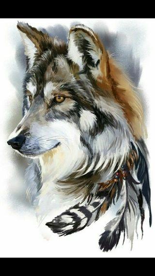 Обои на телефон охотник, серые, волк