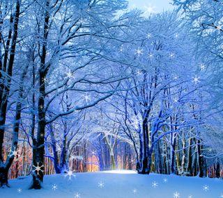 Обои на телефон снежные, праздник, природа, зима, winter hd