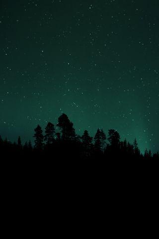 Обои на телефон вселенная, темные, сияние, ночь, космос, звезды, деревья, аврора, nighttime
