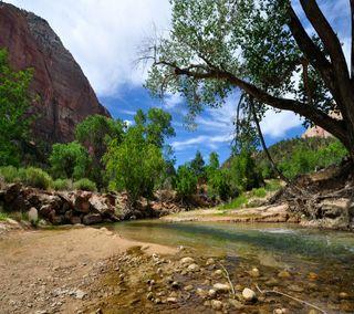Обои на телефон рок, река, парк, каньон, камни, дерево, горы, park canyon