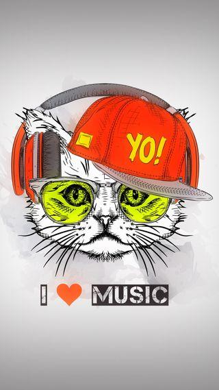 Обои на телефон хипстер, музыка, крутые, кошки, yo