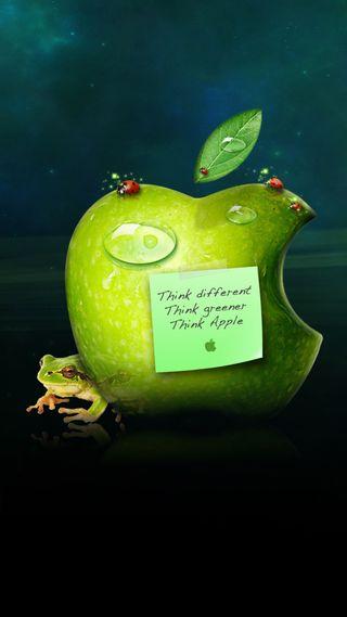 Обои на телефон покинуть, лягушка, думать, эпл, зеленые, think green, insects, apple