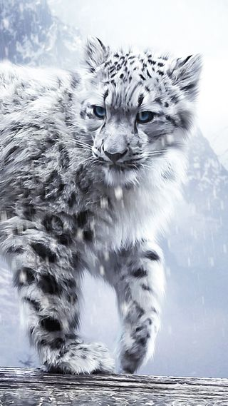 Обои на телефон белые, снег, кошки, леопард