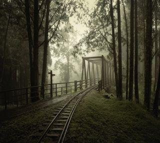 Обои на телефон мост, rails