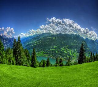 Обои на телефон трава, пейзаж, облака, небо, зеленые, дерево, горы, scenery qhd