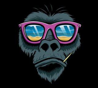 Обои на телефон обезьяны, gfd