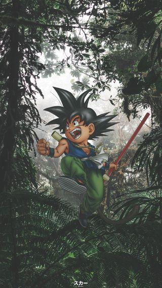 Обои на телефон фотошоп, природа, монтаж, малыш, лес, дракон, драгонболл, гоку, аниме, goku x amazon, dragon, anime edit, amazon